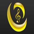 虫虫钢琴app
